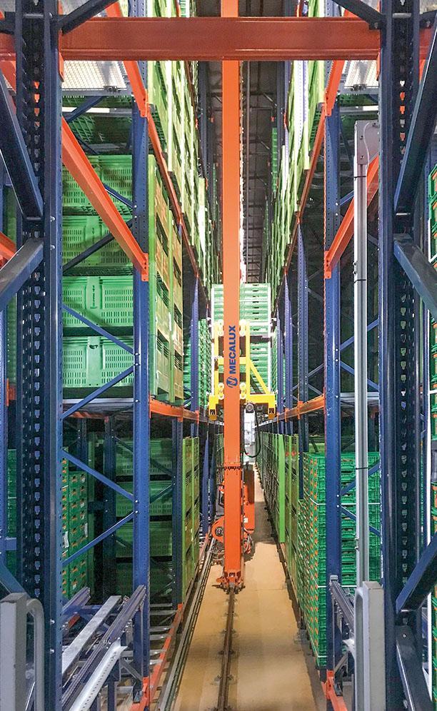 Le nouvel entrepôt automatique de Kiwi Greensun à Salvador de Briteiros