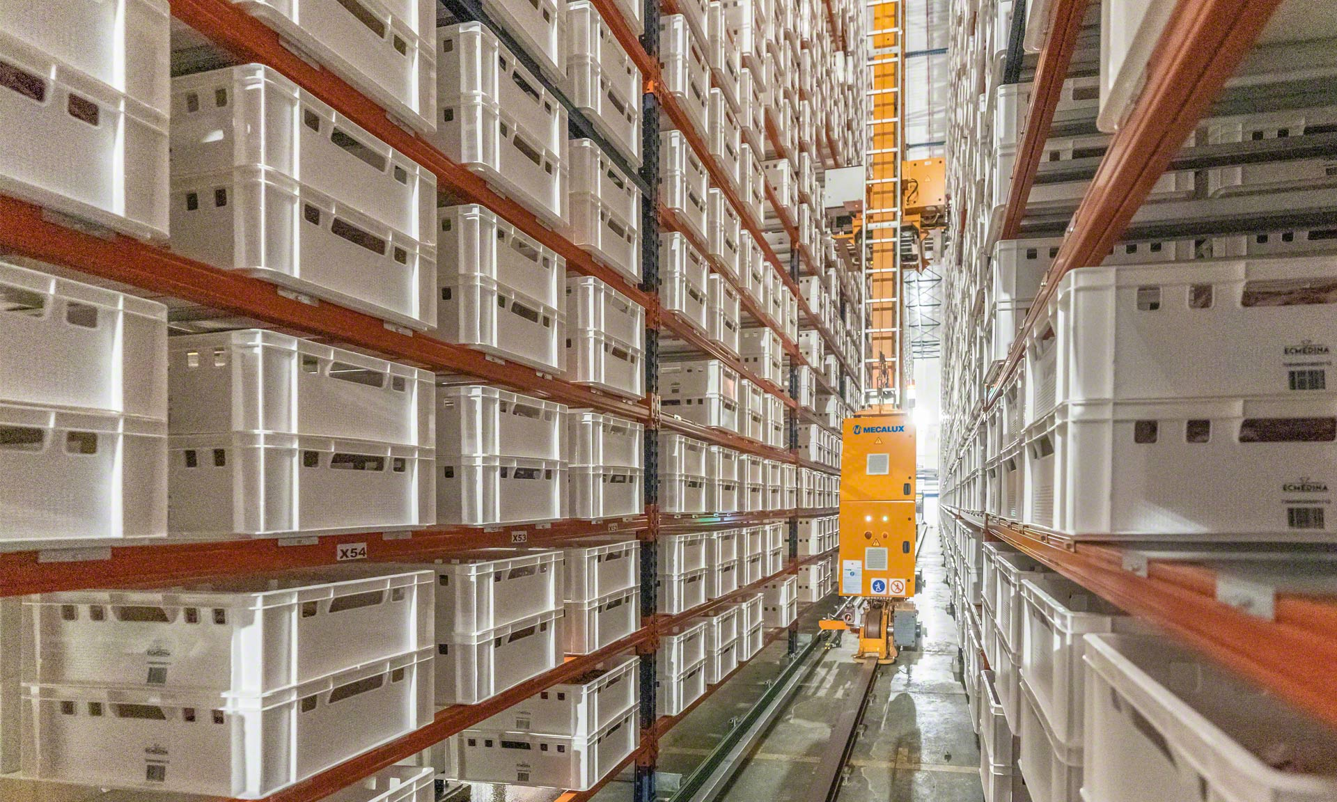 Elaborados Cárnicos Medina : 30 millions de kg/an de viandes dans un bufer automatique